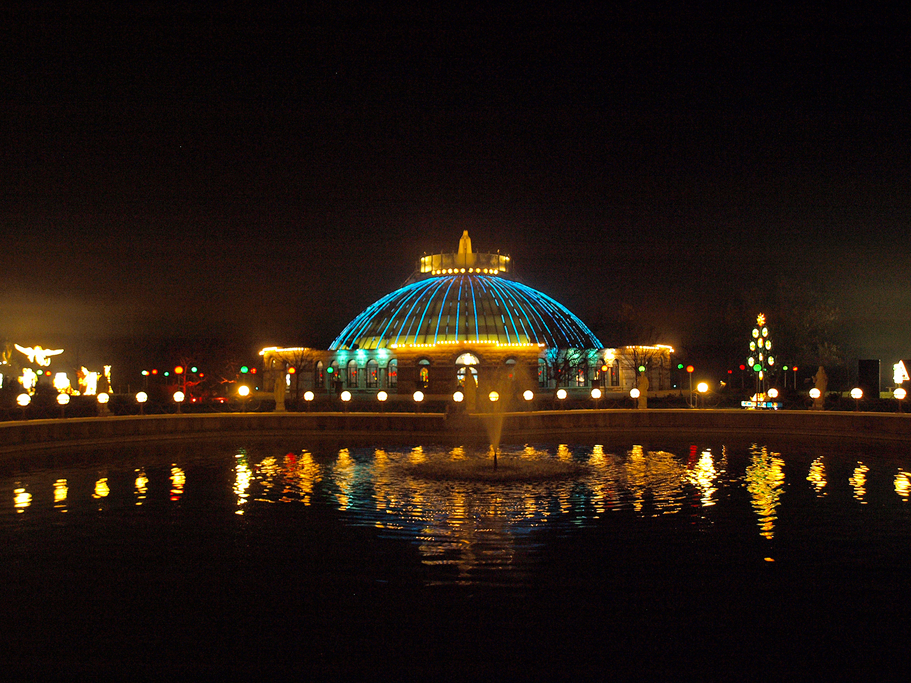Read more about the article Festival of Lights